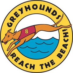 Classic Greyhounds Reach the Beach Car Magnet