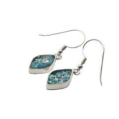 Ancient Roman Glass Petal Shaped Earrings