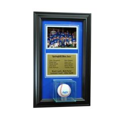 Team Recognition Award Frame with Baseball Case and Plaque