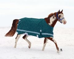 High Neck Turnout Blanket