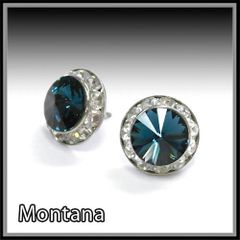 Montana Crystal Earrings