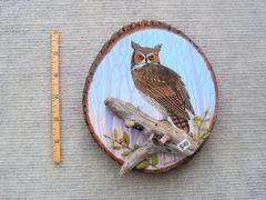 Owl (small)
