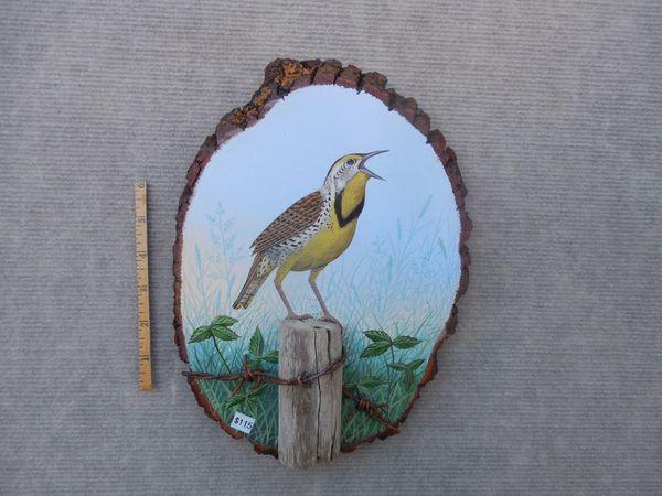 Meadowlark (medium)