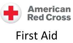 Red Cross First Aid Blended Learning