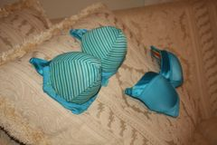 BEV'S BLUE BRA (ON THE LEFT) is larger and stronger than the smaller other company's bra as shown in the picture. Look and see our lift and hold them quality.