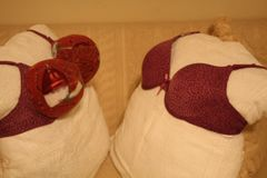 BEV'S MAROON BRA -on the left- is larger and stronger than the smaller other company's bra as shown in the picture. Look and see our lift and hold them quality.
