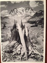 ANSEL ADAMS HAND SIGNED PHOTO LITHOGRAPH DEVASTATED AREA MOUNT LASSEN NATIONAL PARK, CALIFORNIA