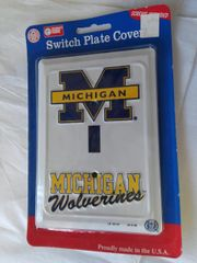 U of M Switch Cover