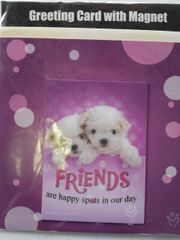 Greeting Card Magnet