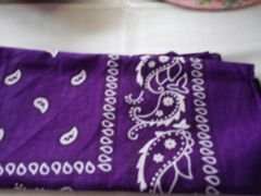 Purple Bandana #1972