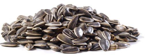 Jumbo Sunflower Seeds Roasted & Salted