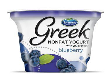 Norman's Greek Non Fat Yogurt 6 oz Blueberry