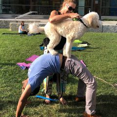 DOGA (Yoga for Dogs & Their Owners) - August 12, 2018