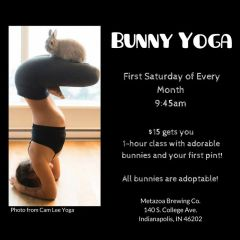 Bunny Yoga - September 1, 2018