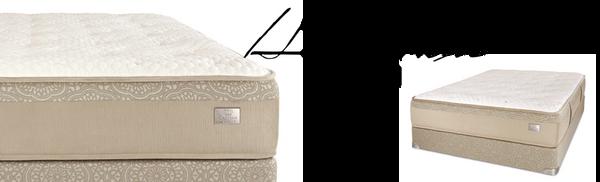 Chattam Wells Hamilton Luxury Plush Mattress World