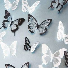 18 BEAUTIFUL BUTTERFLY