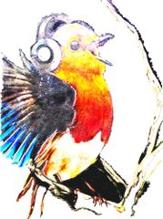 """Bird Songz"" Original Canvas Print or Original"