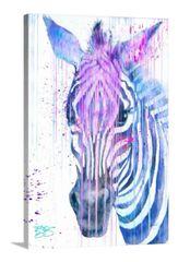 """""""Zebra in POP"""""""
