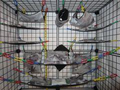 17 pc Bedding - Sugar Glider Cage Set - Rat - Grey Camo