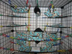 17 pc Bedding - Sugar Glider Cage Set - Rat - Blue Owls