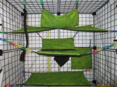 12 Pc - green marble - Sugar Glider Oversized Cage Set