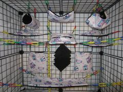 15 pc Bedding - Sugar Glider Cage Set - Rat - Spotted Owls