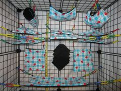 15 pc Bedding - Sugar Glider Cage Set - Rat - Blue Picnic Lady Bugs