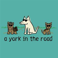 A York in the Road
