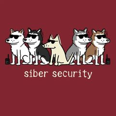 Siber Security