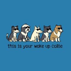 This is Your Wake Up Collie