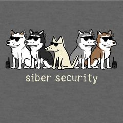 Siber Security (Lightweight Unisex)