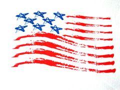 8 Star Flag T-shirt