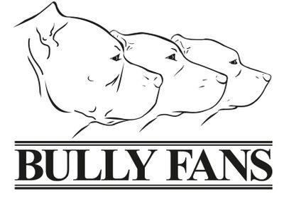 Bully Fans