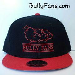 Bully Fans Logo Snapback Red Thread