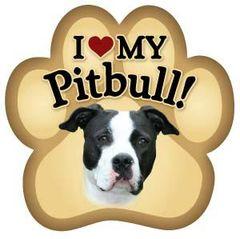 I Love My Pitbull Paw Magnet