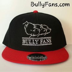 Bully Fans Logo Snapback Red Bill