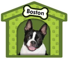 Boston Terrier Doghouse Magnet