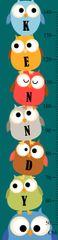 Chubby Owl Growth Chart