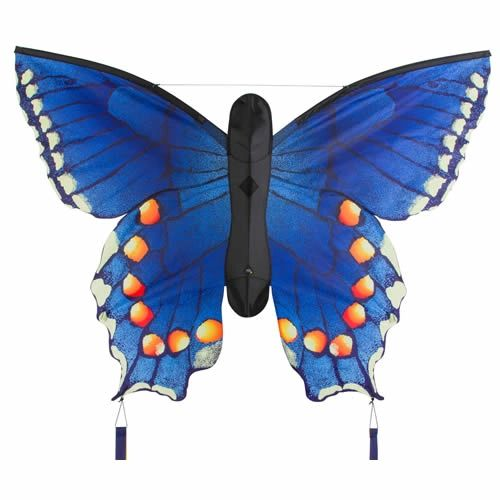 Butterfly Kite Swallowtail Blue by HQ