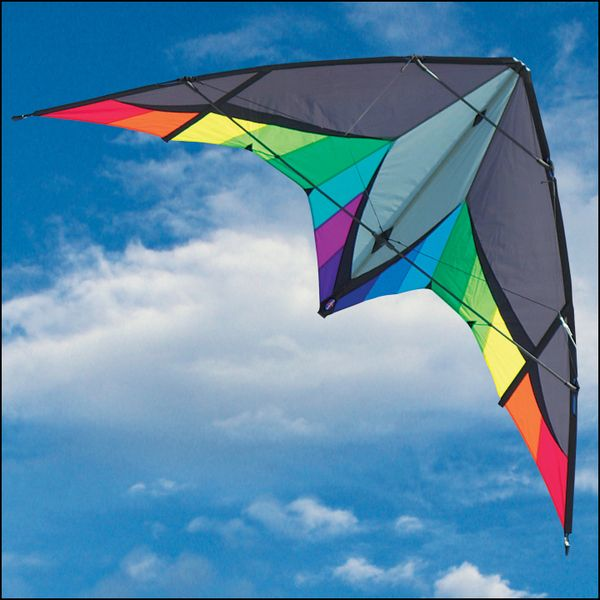 Panther Stunt Kite by Into The Wind
