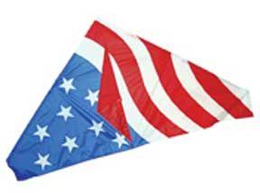 USA Delta by Skydog Kites