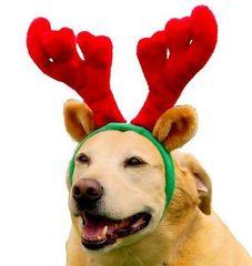 Christmas - Reindeer Antlers