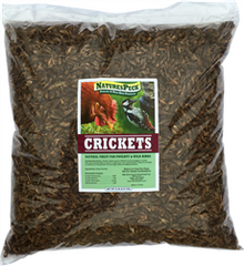 Dried Crickets - 5 lbs