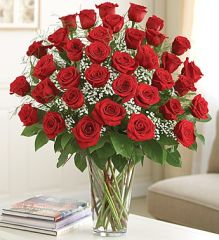 36 Premium Long Stem Red Roses- lov15