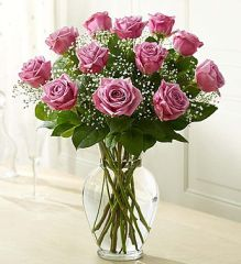 Premium Long Stem Purple Roses- lov03