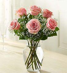 Roses - Pink- lov17