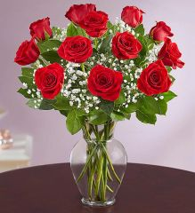 Premium Long Stem Red Roses - val80