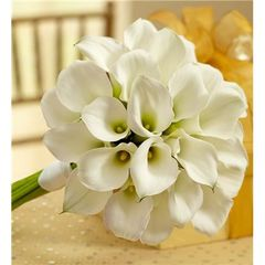 ALL WHITE MINI CALLA LILIES BOUQUET - wed06