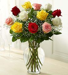 Premium Long Stem Assorted Roses- lov12