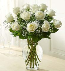 Premium Long Stem White Roses- lov16